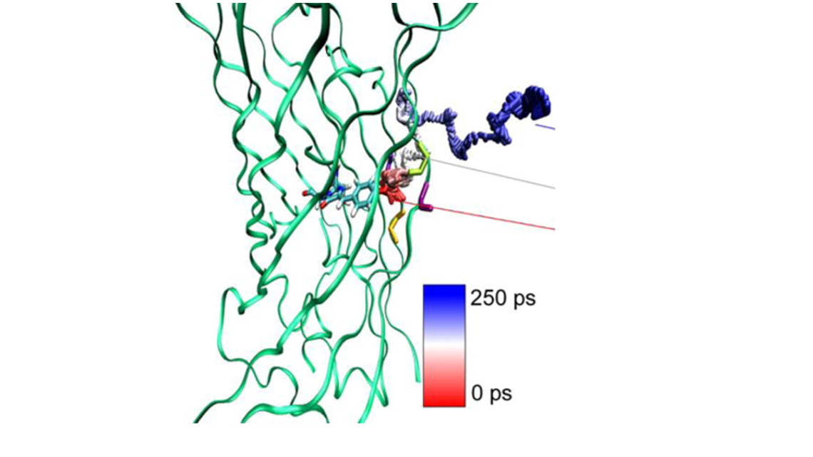 Molecular dynamics study of photo-induced proton transfer in green fluorescent protein