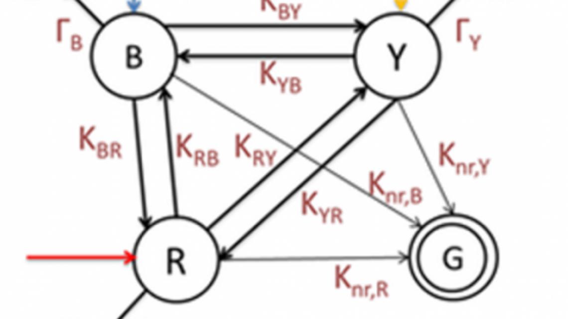 Probabilistic algorithms by multi-chromophoric molecular networks