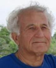 Nimrod Moiseyev