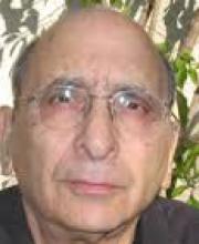 Professor Avinoam Ben-Shaul
